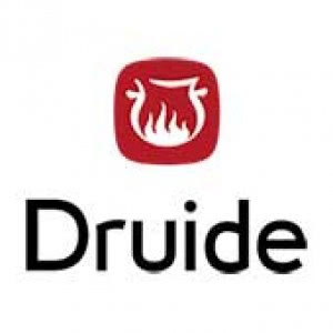 Druide informatique}